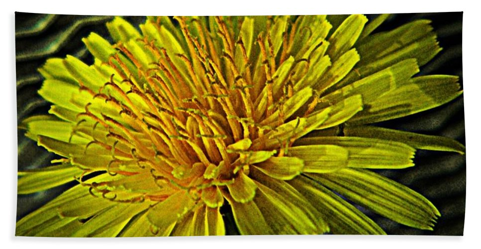 Nature Hand Towel featuring the photograph Flowers Are Weeds With Respect by Chris Berry