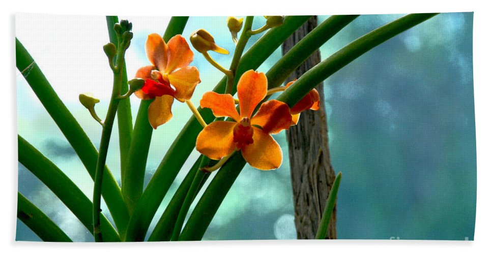 Nature Bath Sheet featuring the photograph Flowers In Spring by Pravine Chester