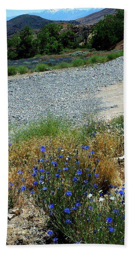 Usa Hand Towel featuring the photograph Flowers In The Gold Hill Desert by LeeAnn McLaneGoetz McLaneGoetzStudioLLCcom