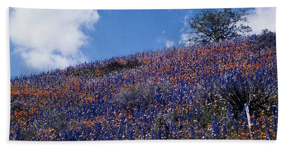 California Bath Sheet featuring the photograph Flowers On A Hill by Stephen Whalen