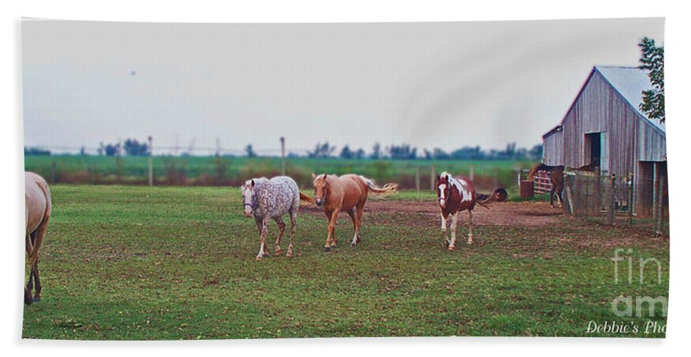 Nature Hand Towel featuring the photograph Follow The Leader by Debbie Portwood
