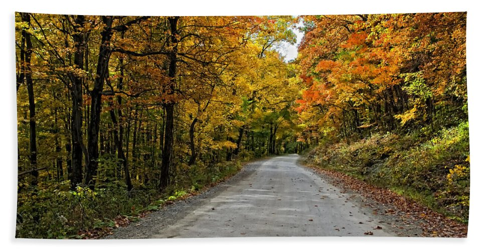 West Virginia Bath Sheet featuring the photograph Follow The Yellow Leafed Road by Steve Harrington