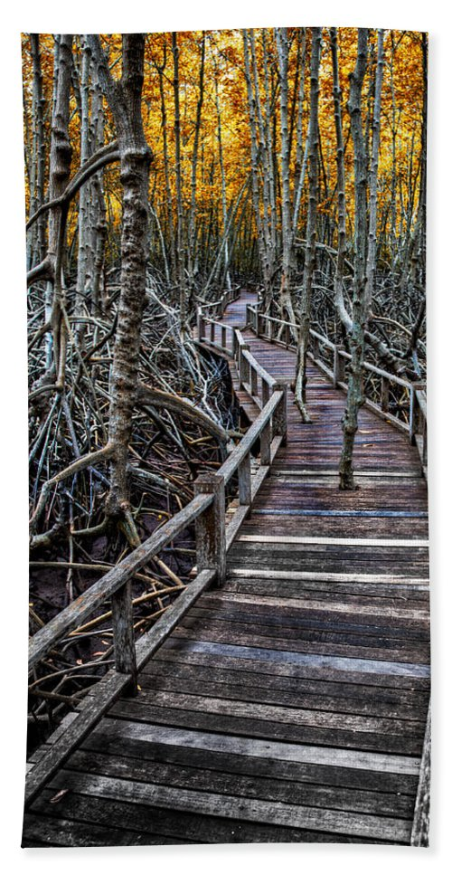 Mangrove Forest Bath Sheet featuring the photograph Footpath In Mangrove Forest by Adrian Evans