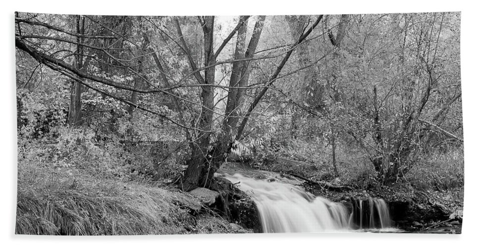 Creek Bath Sheet featuring the photograph Forest Creek Waterfall In Black And White by James BO Insogna