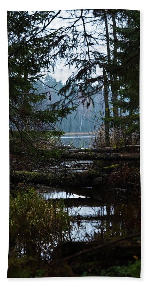 Autumn Bath Sheet featuring the photograph Forest Lake by Michael Goyberg