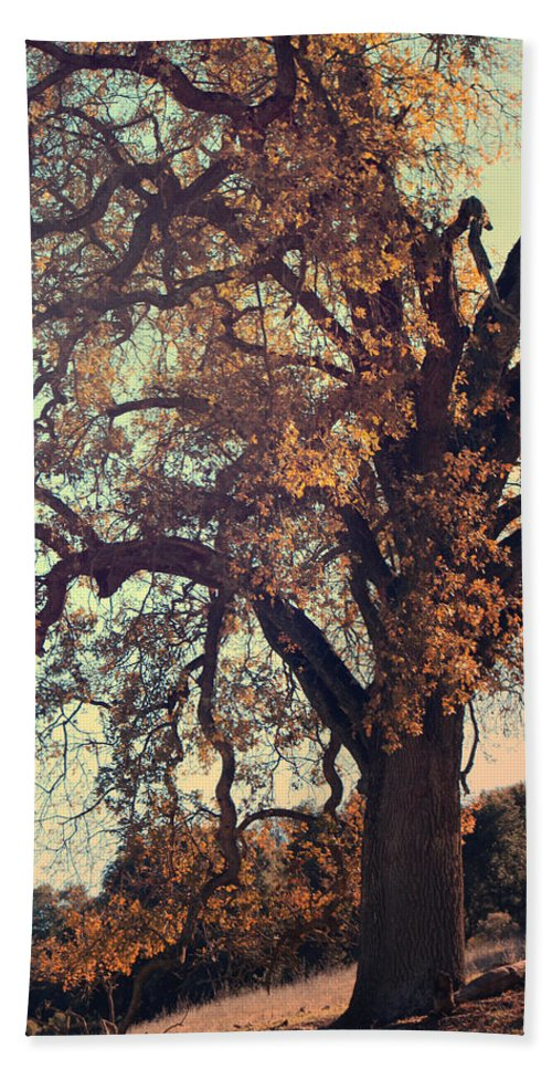 Pleasanton Hand Towel featuring the photograph Forevermore by Laurie Search
