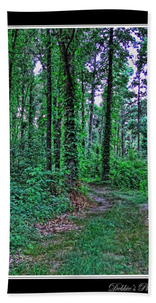 Nature Bath Sheet featuring the photograph Forrest Trail by Debbie Portwood