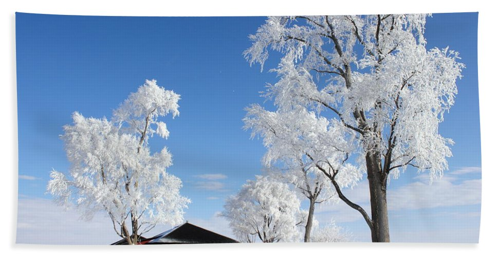 Landscape Bath Sheet featuring the photograph Fresh Frost by Bryan Noll