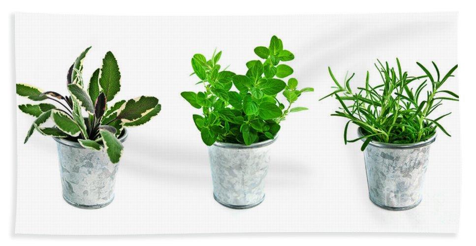 Herb Bath Towel featuring the photograph Fresh Herbs by Elena Elisseeva