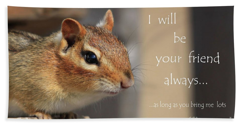 Chipmunk Hand Towel featuring the photograph Friend For Peanuts by Cathy Beharriell