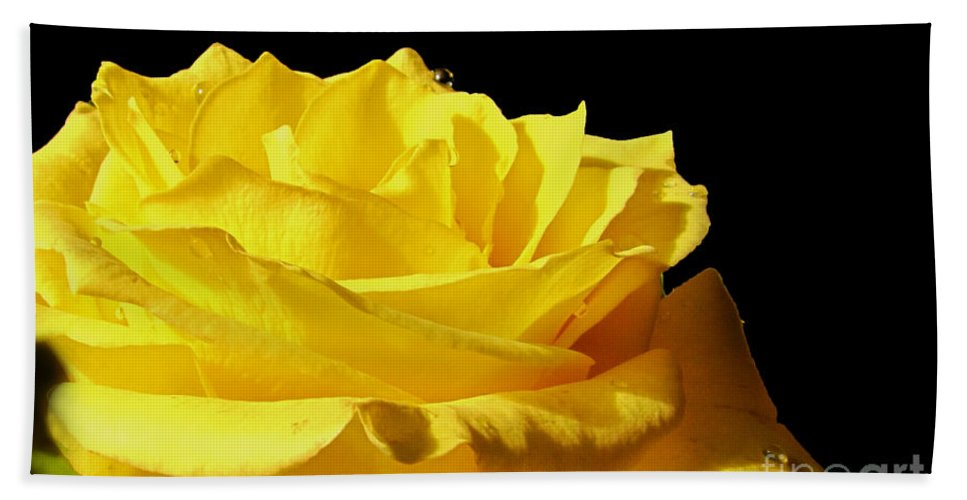Nature Bath Sheet featuring the photograph Full Bloom by Debbie Portwood