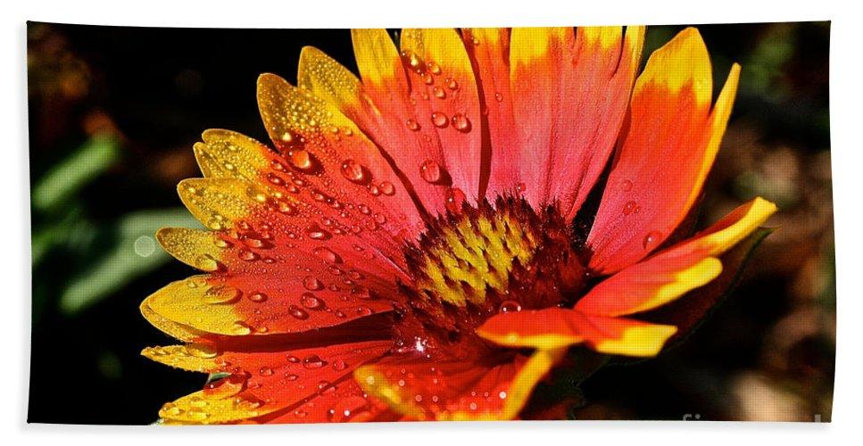 Plant Bath Sheet featuring the photograph Gaillardia Flower by Susan Herber