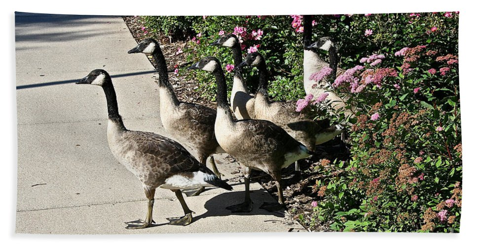 Goose Hand Towel featuring the photograph Garden Geese Parade by Susan Herber