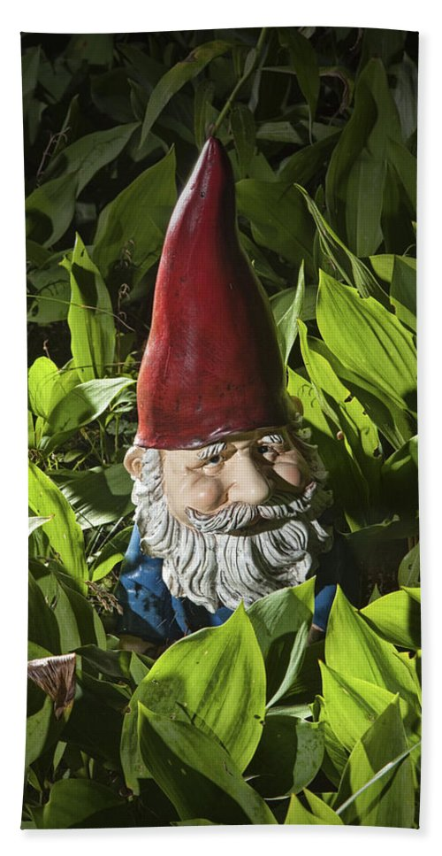Art Bath Sheet featuring the photograph Garden Gnome No 0065 by Randall Nyhof