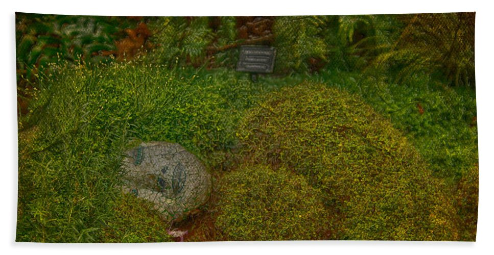 Jerry Cordeiro Framed Prints Framed Prints Photographs Photographs Photographs Hand Towel featuring the photograph Garden Of Dreams by The Artist Project