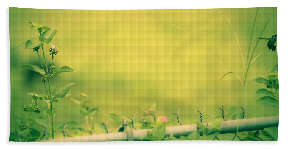 Hand Towel featuring the photograph Garden Scene After Lightroom by Kim Henderson