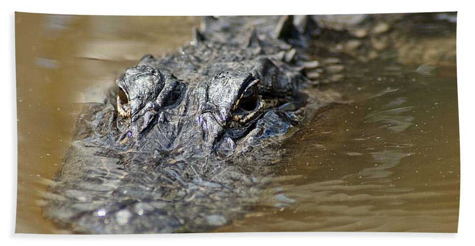 Gator Hand Towel featuring the photograph Gator 3 by Joe Faherty