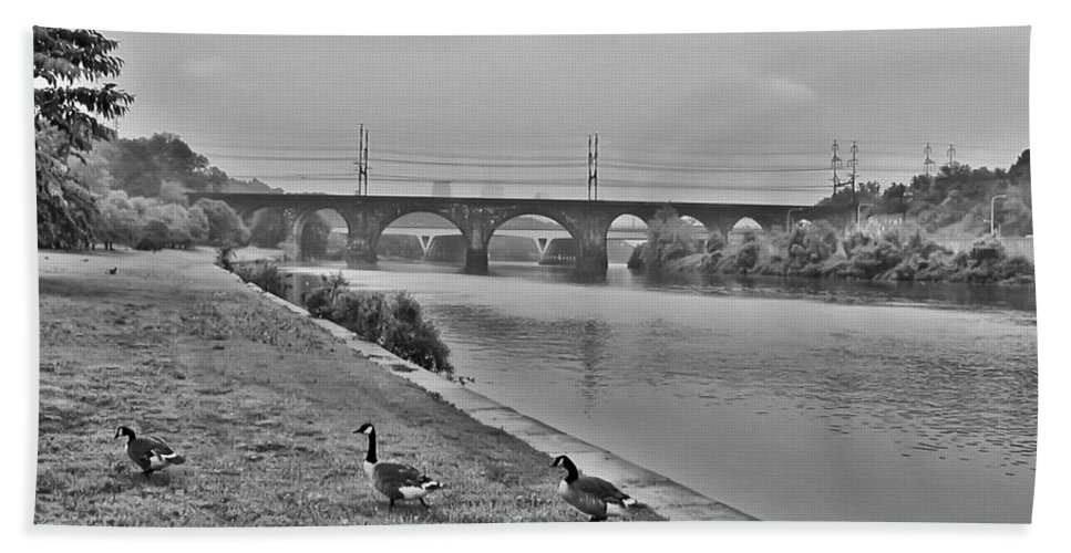 Geese Along The Schuylkill River Hand Towel featuring the photograph Geese Along The Schuylkill River by Bill Cannon