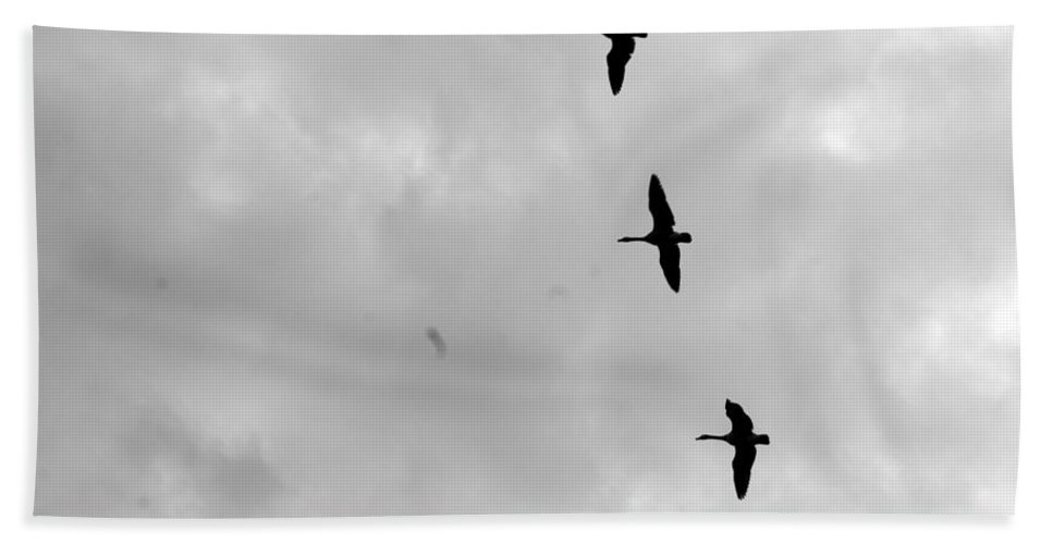Goose Bath Sheet featuring the photograph Geese In Flight by Joe Faherty