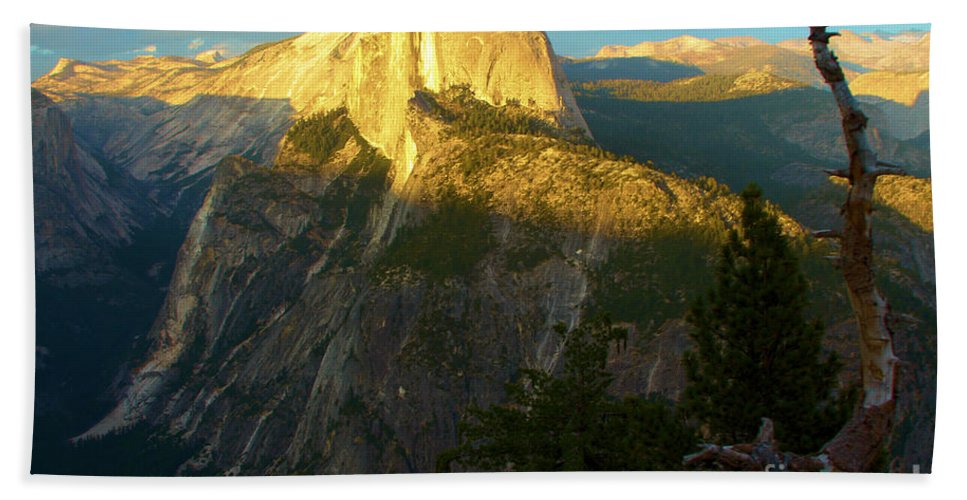 Half Dome Hand Towel featuring the photograph Glacier Point Tree by Adam Jewell