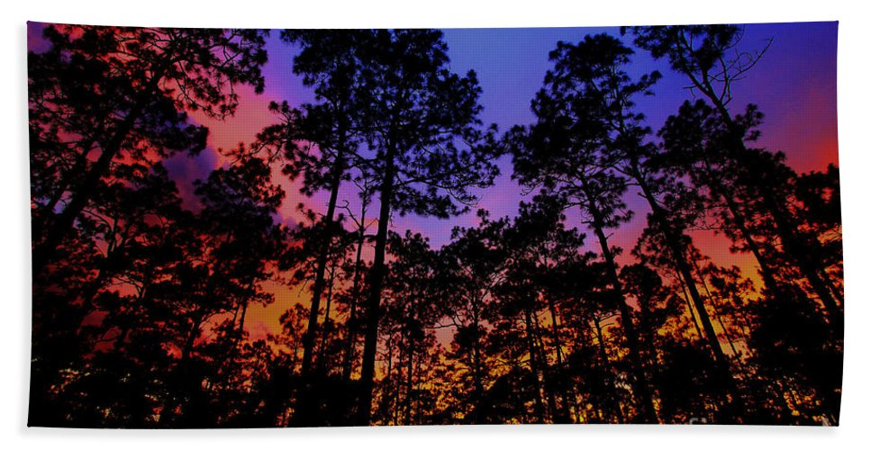 Glowing Forest Bath Towel featuring the photograph Glowing Forest by Barbara Bowen
