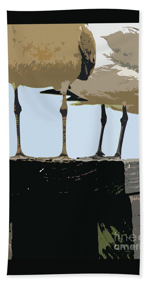 Seagull Bath Sheet featuring the photograph Glucosamine Candidates by Joe Jake Pratt