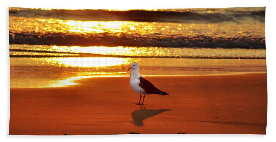 Golden Sunrise Seagull Bath Sheet featuring the photograph Golden Sunrise Seagull by Bill Cannon