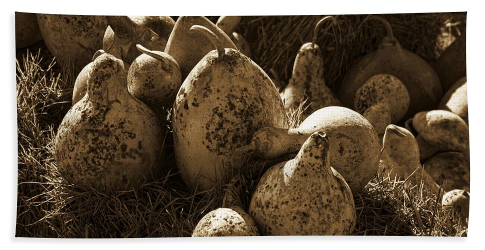 Gourds Bath Sheet featuring the photograph Gourds In Sepia by Kathy Clark
