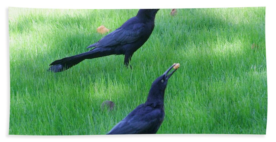 Grackles Bath Sheet featuring the photograph Grackles In The Yard by Mary Deal