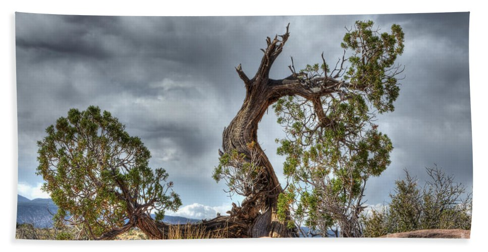 Grand Canyon Hand Towel featuring the photograph Grand Canyon Facing The Storm by Bob Christopher