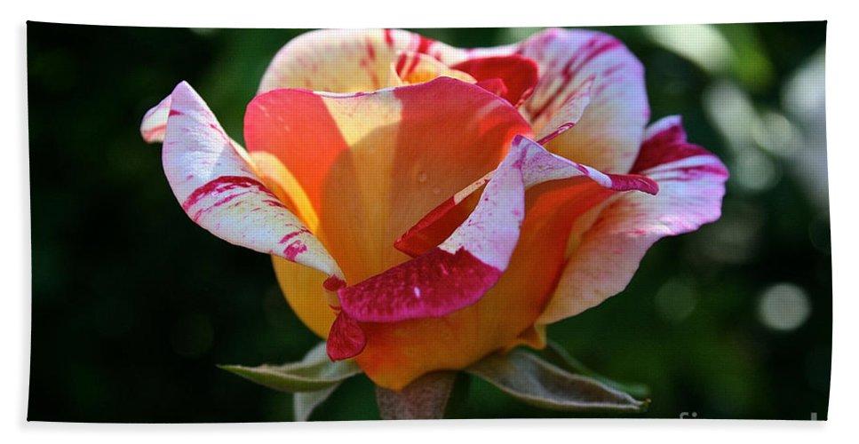 Outdoors Bath Sheet featuring the photograph Grandiflora by Susan Herber