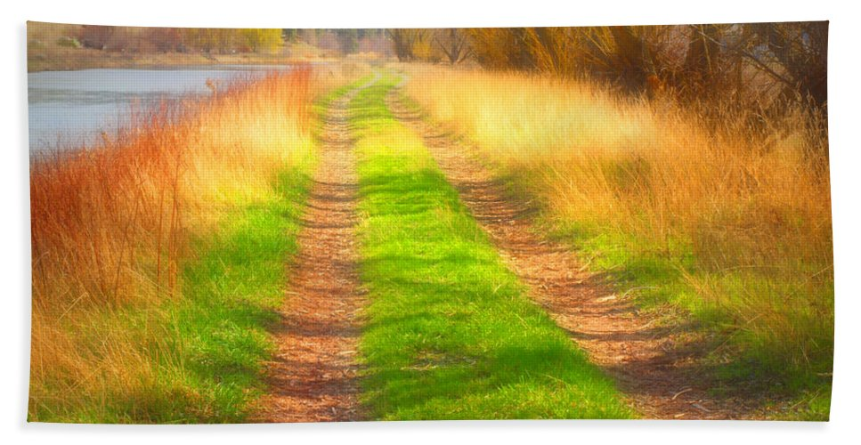 Hand Towel featuring the photograph Grass And Shadows by Tara Turner