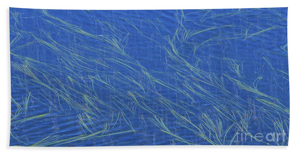 Bronstein Hand Towel featuring the photograph Grasses And Water by Sandra Bronstein