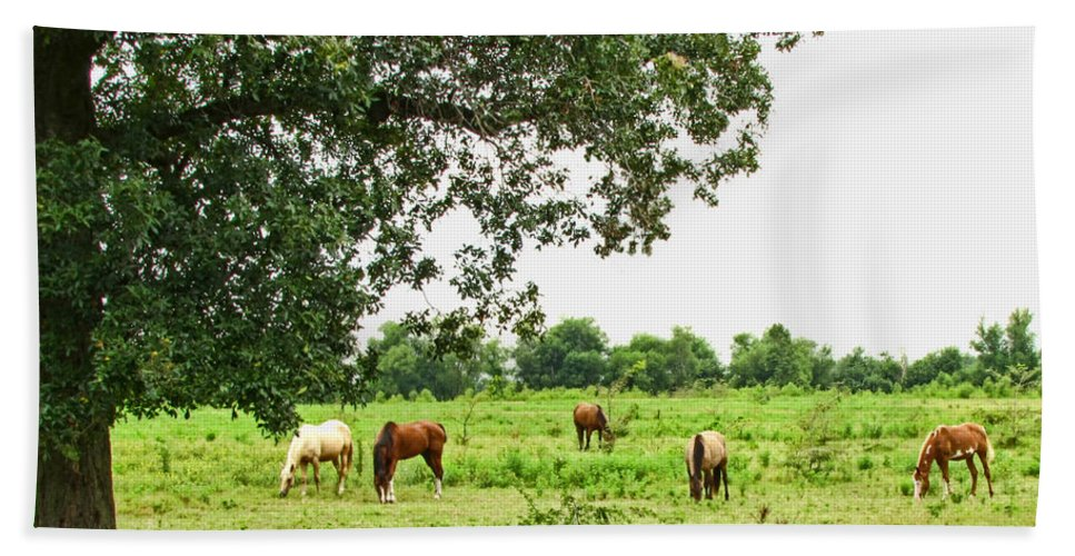 Bath Sheet featuring the photograph Grazing Under The Oak by Debbie Portwood