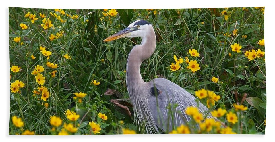 Birds Bath Sheet featuring the photograph Great Blue Heron In The Flowers by Myrna Bradshaw