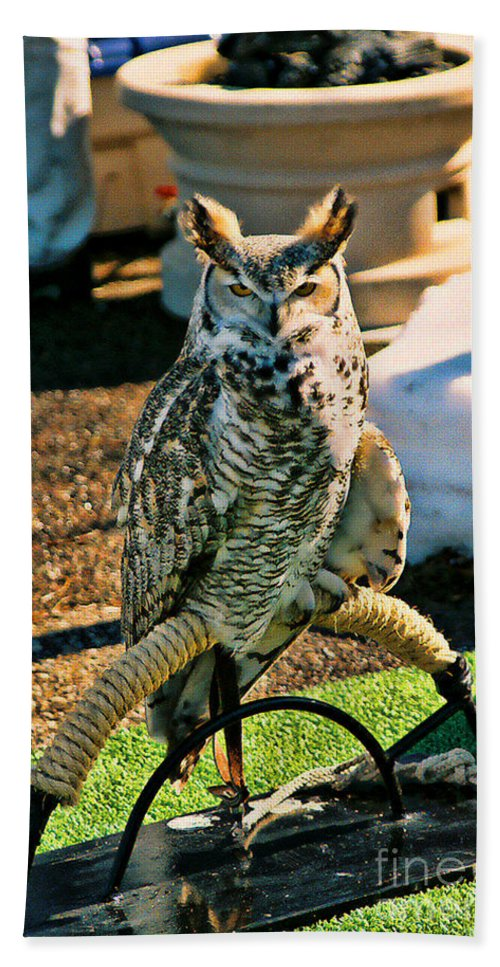 Great Horned Owl Hand Towel featuring the photograph Great Horned Owl by Tommy Anderson