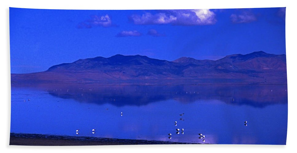Utah Bath Sheet featuring the photograph Great Salt Lake From Causeway by Rich Walter