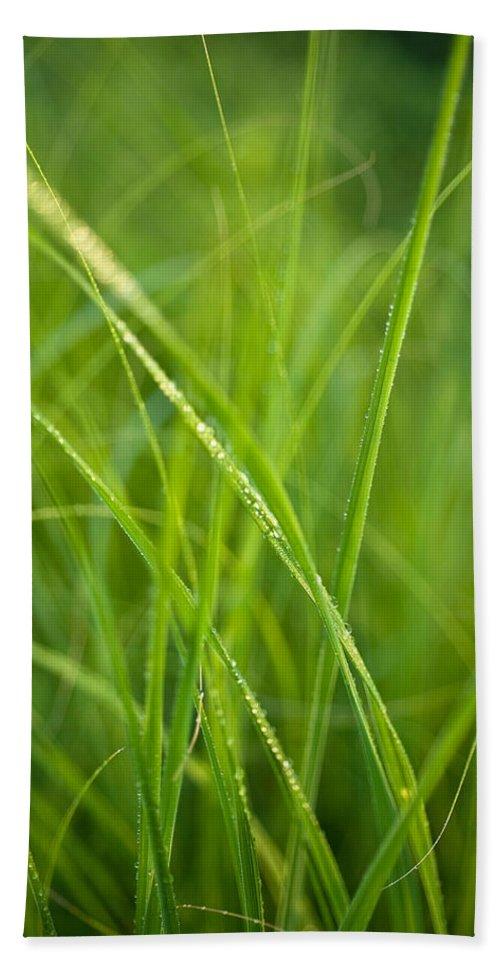 Prairie Hand Towel featuring the photograph Green Prairie Grass by Steve Gadomski
