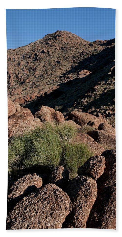 Gold Butte Region Bath Sheet featuring the photograph Green Tuft In Sandstone by Lorraine Devon Wilke
