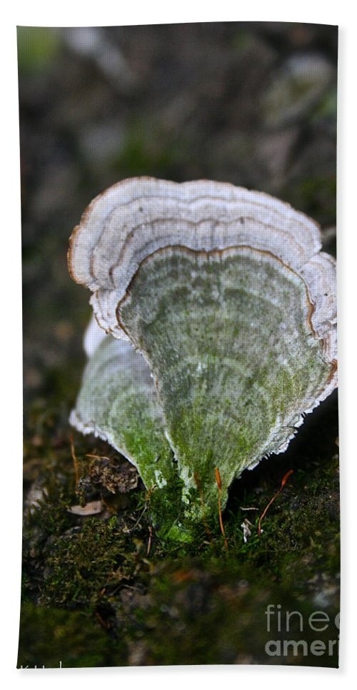 Tree Bath Sheet featuring the photograph Green Turkey Tails by Susan Herber