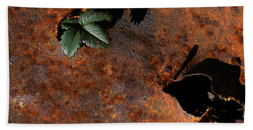 Abstract Bath Towel featuring the photograph Green Versus Rust by Susan Capuano