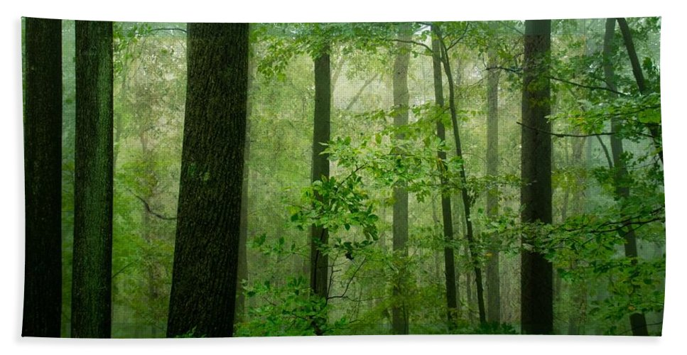 Green Bath Sheet featuring the photograph Greener Than Green by Trish Tritz