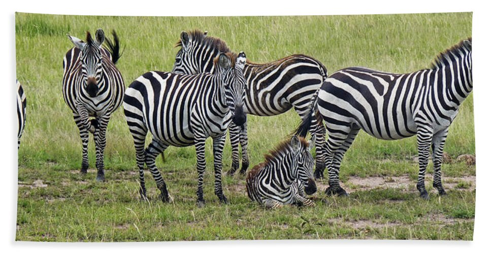 Kenya Hand Towel featuring the photograph Group Of Barcodes by Tony Murtagh