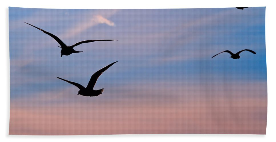 Seagulls Bath Towel featuring the photograph Gulls At Dusk by Karol Livote