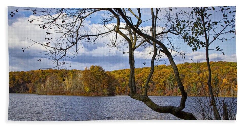 Art Bath Sheet featuring the photograph Hall Lake In Autumn No 0118 by Randall Nyhof