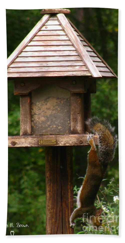 Bird Feeder Bath Sheet featuring the photograph Hang On by Donna Brown
