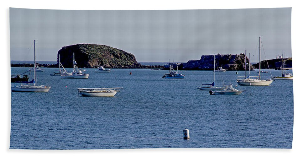 California Hand Towel featuring the photograph Harbor On The California Coast by Mick Anderson