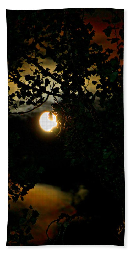 Moon Hand Towel featuring the photograph Haunting Moon IIi by Jeanette C Landstrom