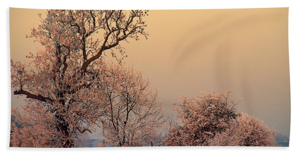 Frost Hand Towel featuring the photograph Frost 2 by Linsey Williams