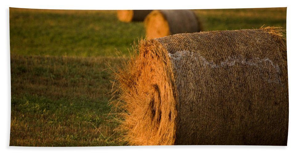 Hay Bath Sheet featuring the photograph Hay Bales by Mark Duffy